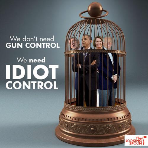 idiot-control
