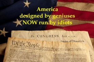 America run by idiots