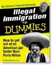 illegal-immigration-for-dummies