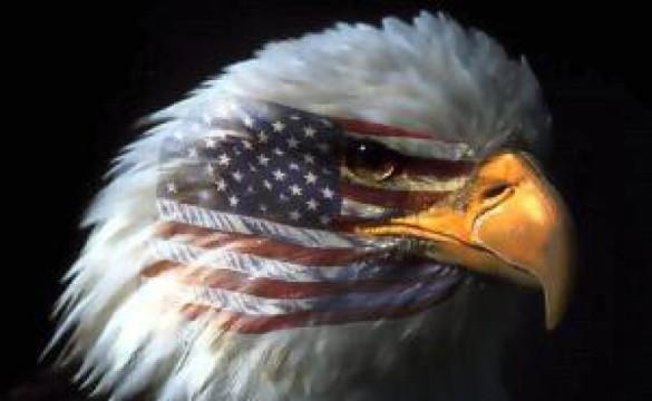 cropped-american-eagle1.jpg