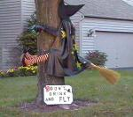 A-funny-halloween-picture-of-a-witch-who-has-crashed-into-a-tree-while-flying-on-her-broomstick